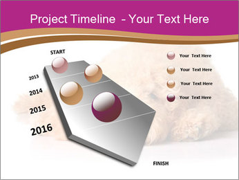 0000083795 PowerPoint Template - Slide 26