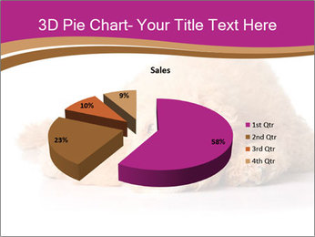 0000083795 PowerPoint Template - Slide 35