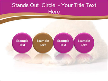 0000083795 PowerPoint Template - Slide 76