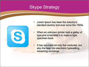 0000083795 PowerPoint Template - Slide 8