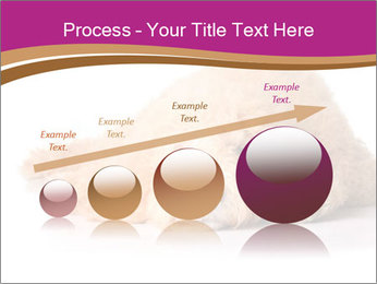 0000083795 PowerPoint Template - Slide 87