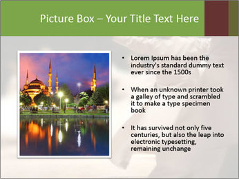 0000083797 PowerPoint Template - Slide 13
