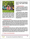 0000083798 Word Templates - Page 4