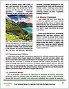 0000083809 Word Templates - Page 4