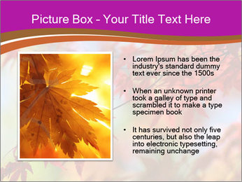 0000083819 PowerPoint Template - Slide 13
