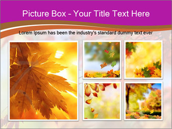 0000083819 PowerPoint Template - Slide 19