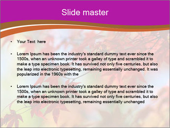 0000083819 PowerPoint Template - Slide 2