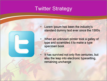 0000083819 PowerPoint Template - Slide 9