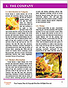 0000083819 Word Template - Page 3