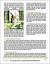0000083822 Word Templates - Page 4