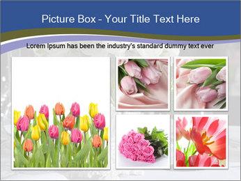 0000083824 PowerPoint Templates - Slide 19