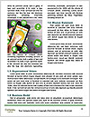 0000083825 Word Template - Page 4