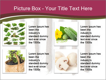 0000083826 PowerPoint Template - Slide 14
