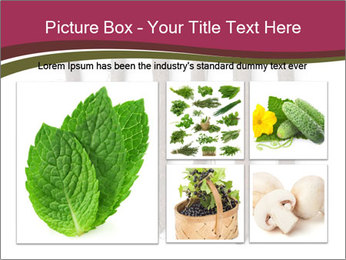 0000083826 PowerPoint Template - Slide 19