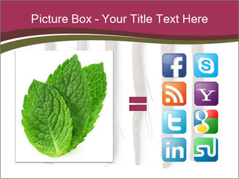 0000083826 PowerPoint Template - Slide 21