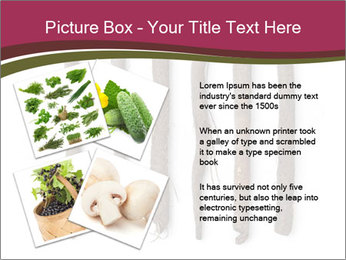 0000083826 PowerPoint Template - Slide 23