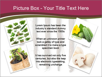 0000083826 PowerPoint Template - Slide 24