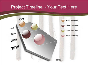 0000083826 PowerPoint Template - Slide 26