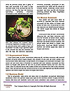 0000083833 Word Templates - Page 4