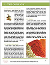0000083836 Word Templates - Page 3