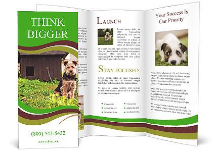 0000083837 Brochure Template