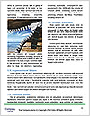 0000083857 Word Template - Page 4