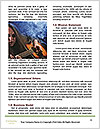 0000083859 Word Template - Page 4