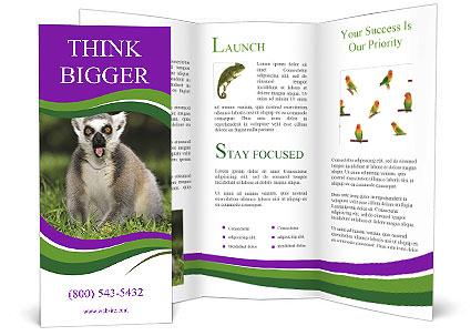0000083864 Brochure Template
