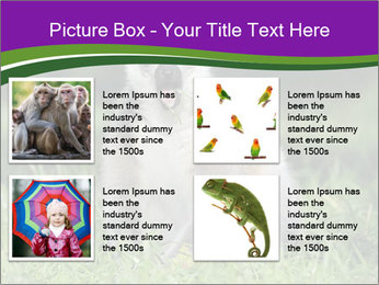 0000083864 PowerPoint Template - Slide 14