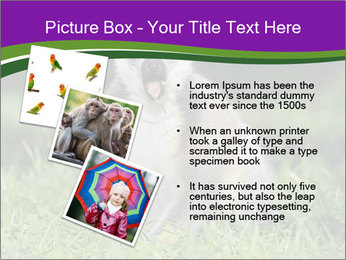 0000083864 PowerPoint Template - Slide 17