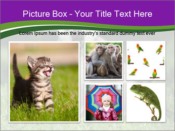 0000083864 PowerPoint Template - Slide 19