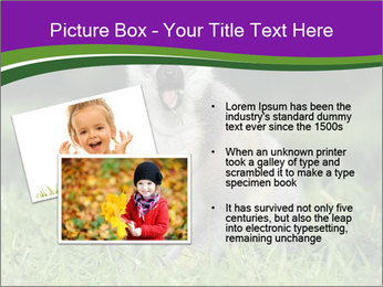 0000083864 PowerPoint Template - Slide 20