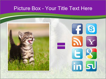 0000083864 PowerPoint Template - Slide 21