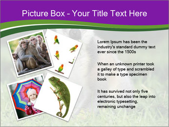 0000083864 PowerPoint Template - Slide 23
