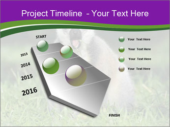 0000083864 PowerPoint Template - Slide 26