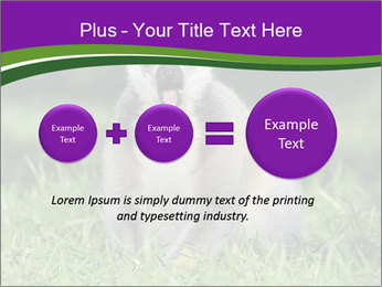 0000083864 PowerPoint Template - Slide 75