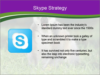 0000083864 PowerPoint Template - Slide 8