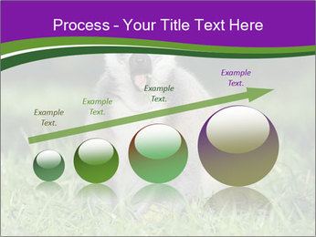 0000083864 PowerPoint Template - Slide 87
