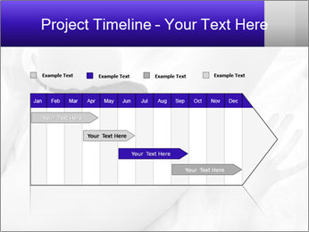 0000083866 PowerPoint Template - Slide 25