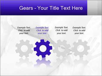 0000083866 PowerPoint Template - Slide 48