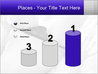 0000083866 PowerPoint Template - Slide 65