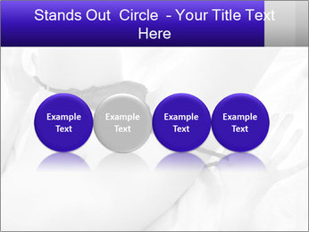0000083866 PowerPoint Template - Slide 76