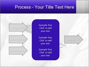 0000083866 PowerPoint Template - Slide 85