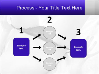 0000083866 PowerPoint Template - Slide 92