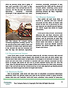 0000083867 Word Templates - Page 4