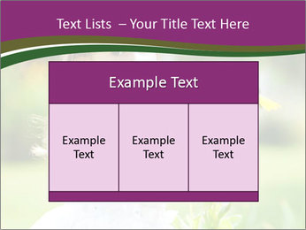 0000083868 PowerPoint Templates - Slide 59