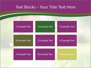 0000083868 PowerPoint Templates - Slide 68