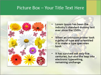 0000083874 PowerPoint Templates - Slide 13