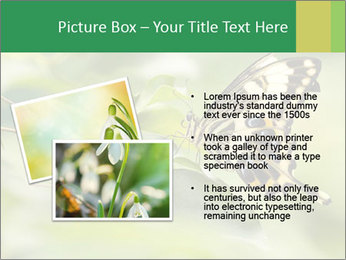 0000083874 PowerPoint Templates - Slide 20