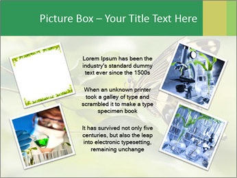 0000083874 PowerPoint Templates - Slide 24